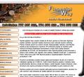 Webová stránka: Financial Way